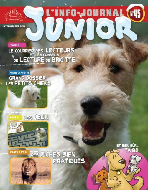 magazine info journal junior gratuit pour enfant. Black Bedroom Furniture Sets. Home Design Ideas